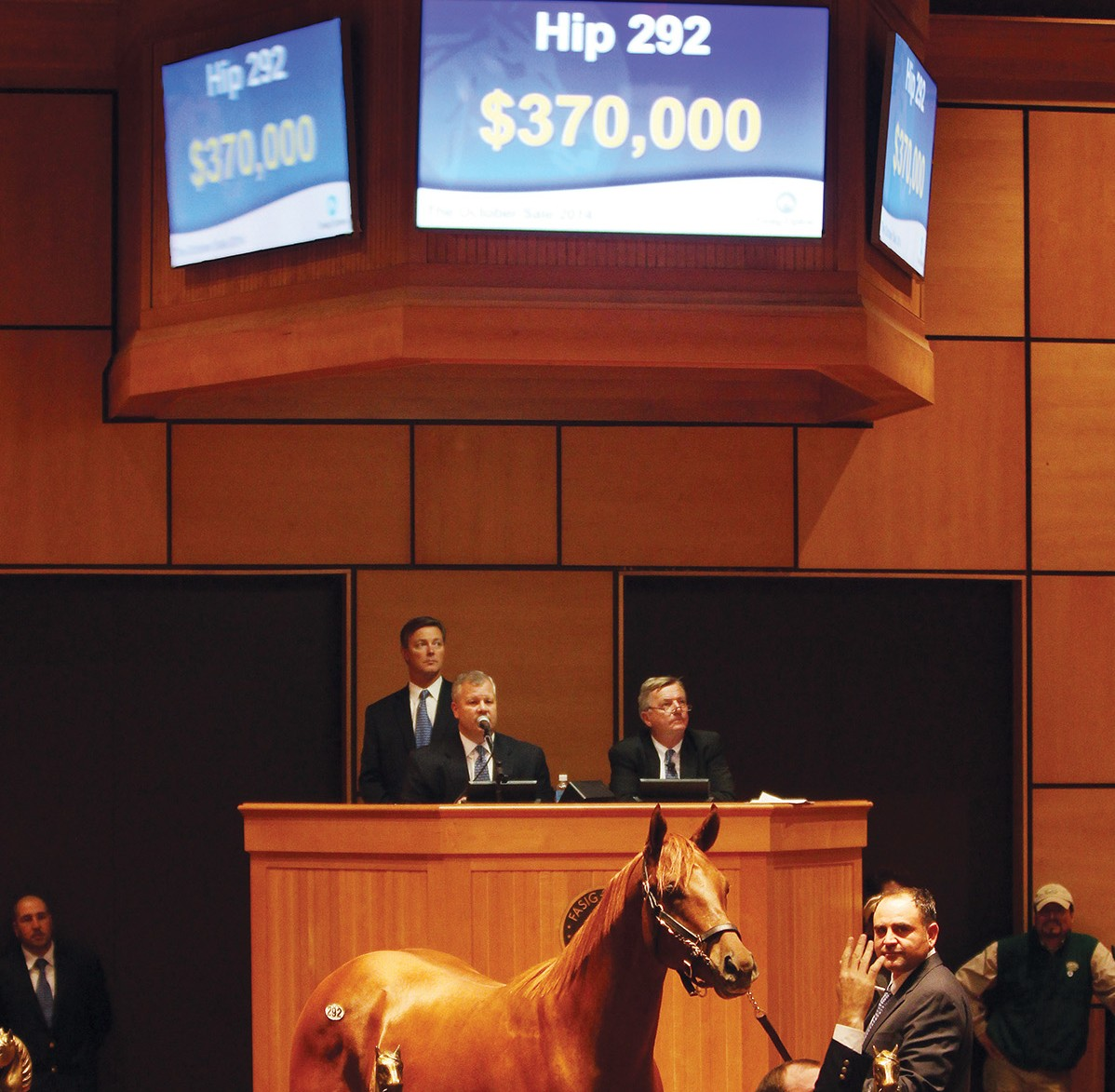 Hip 292,  2014 Fasig-Tipton October Sale